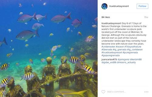 Underwater Sculpture Park, Grenada (Instagram truebluebayresort)